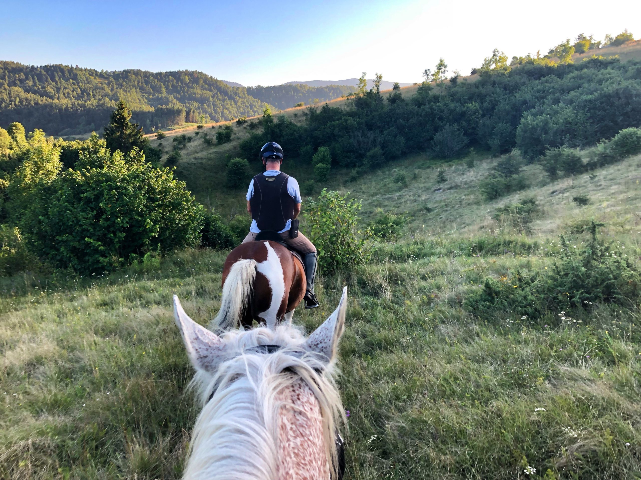horse-riding-in-mountains-PNNS8GM